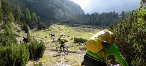 DH Fanes Trail